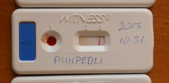Pumpedli